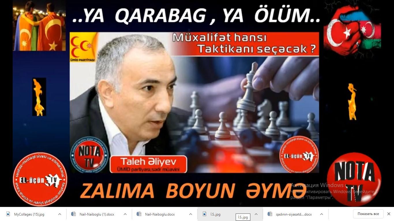 """Taleh Əliyev: """"Ramiz Mehdiyevin son çıxışında təhdid var idi"""""""